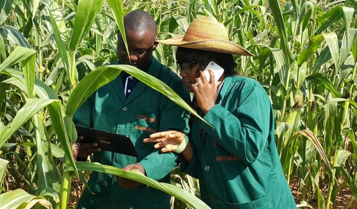 Smallholder agriculture in Africa