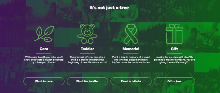 Treeplex