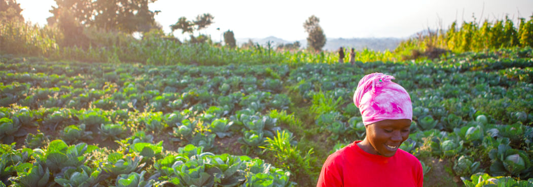 African smallholder agriculture requires AgriTech and collaboration