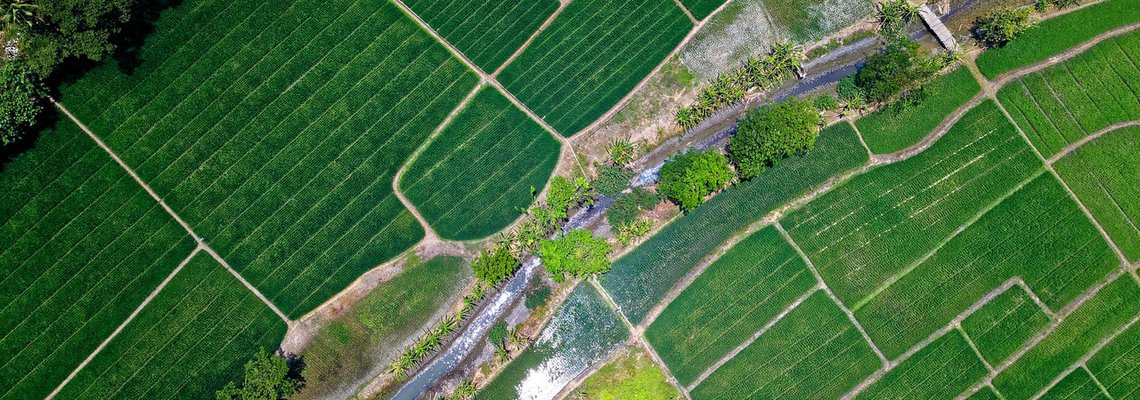 The Rise of AgriTech: Feeding the World and Beyond