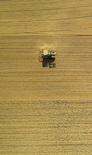 Improving Efficiency and Sustainability of Farming Businesses Through Digital Solutions